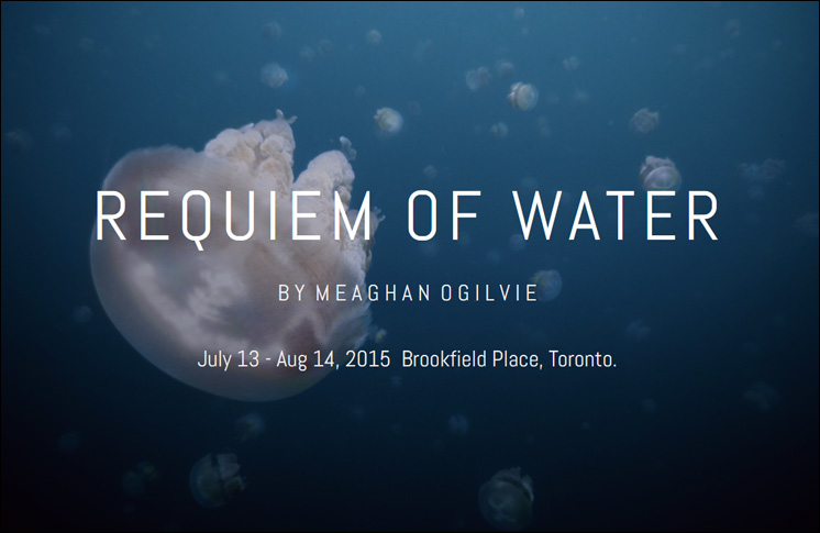 REQUIEM OF WATER BY MEAGHAN OGILVIE
