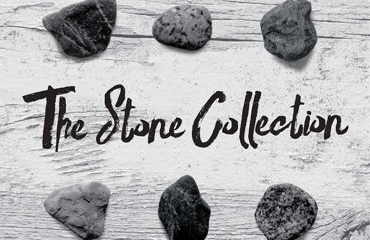 LOCAL AUTHOR KATERI AKIWENZIE-DAMM LAUNCHES NEW BOOK: THE STONE COLLECTION