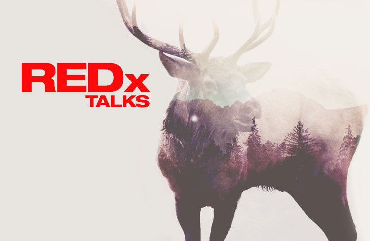 REDX TALKS: ART IS THE MEDICINE – PREMIERING IN EDMONTON
