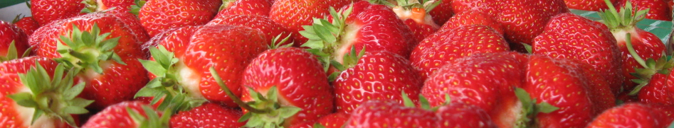 stawberries_banner1