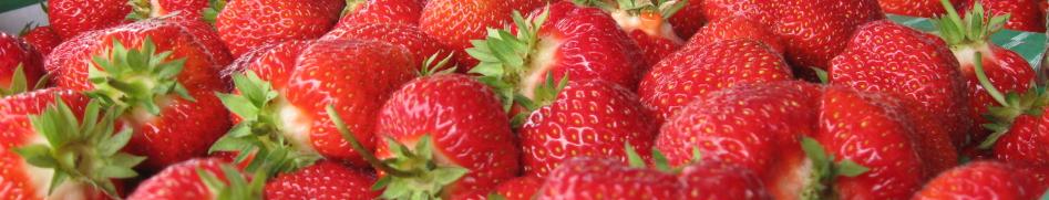 stawberries_banner1