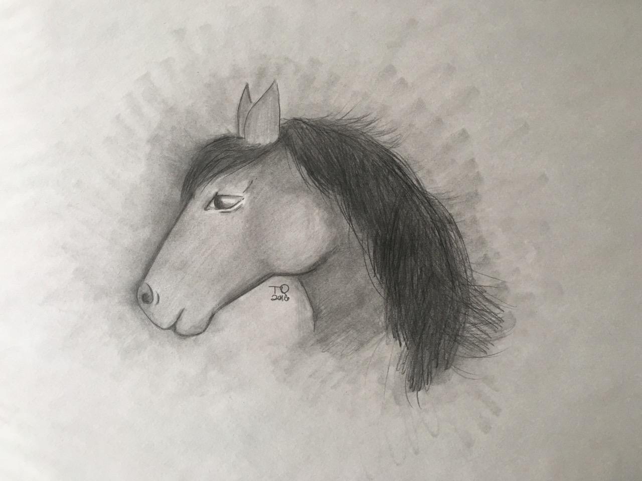 Newo-Mistatim (four-horse) by Tiffany Marie Quewezance