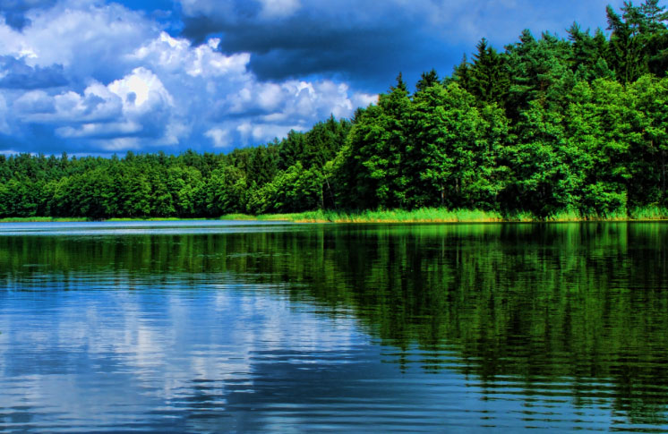 Protecting the Purest Water: Two day walk from Cedar Point to the Waverley Uplands