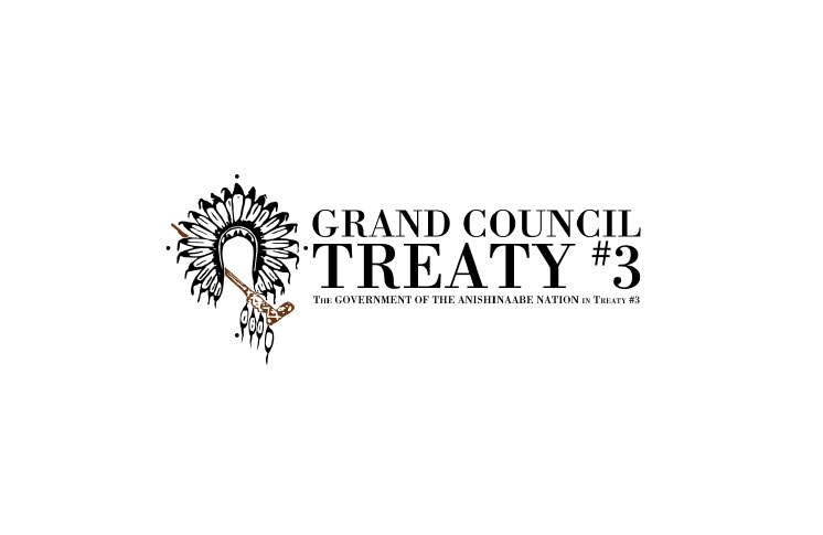 Grand Council Treaty #3 stands up for Indigenous youths in health curriculum litigation