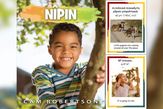 Goldrock Press Pubishes New Indigenous Children's Book, 'Nîpin' by Cam Robertson